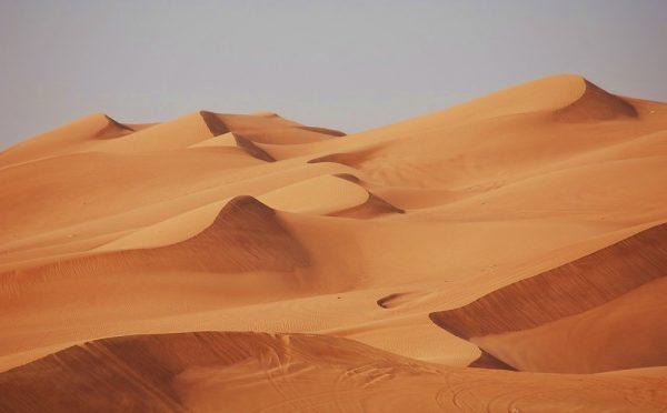 Bon plan activité à Dubaï